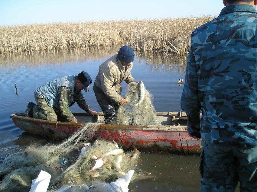 В Гайском районе на Ириклинском водохранилище поймали браконьера