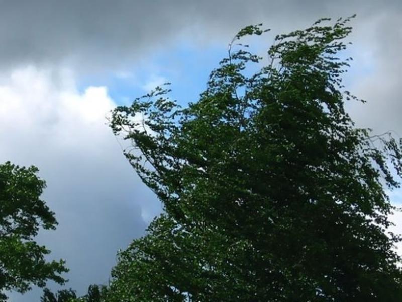Шквалистый ветер ожидается в Оренбурге