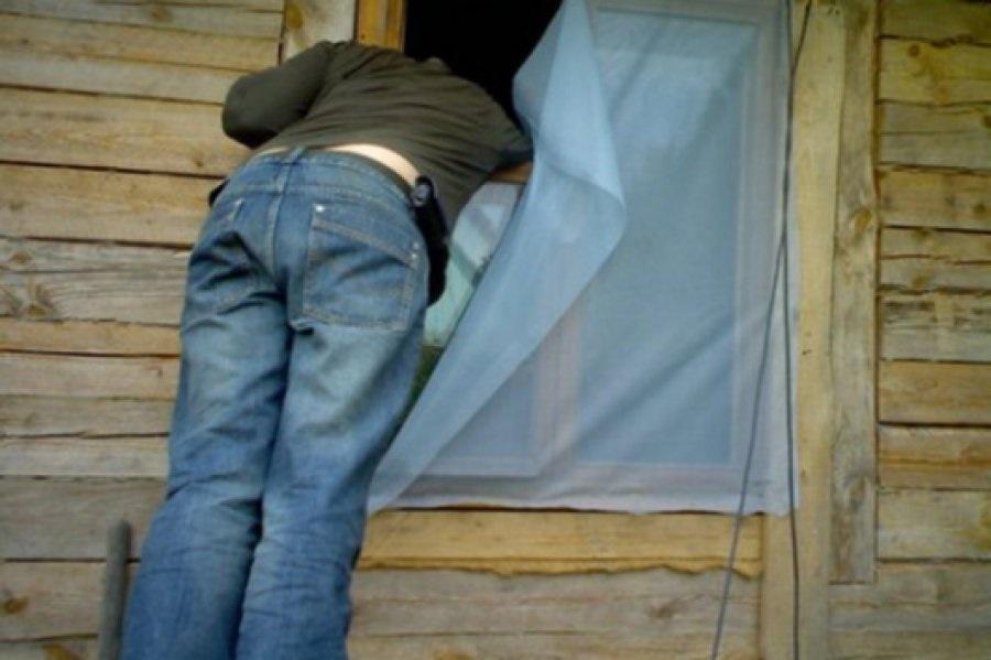 Полиция задержала подозреваемого в кражах из дачных домов
