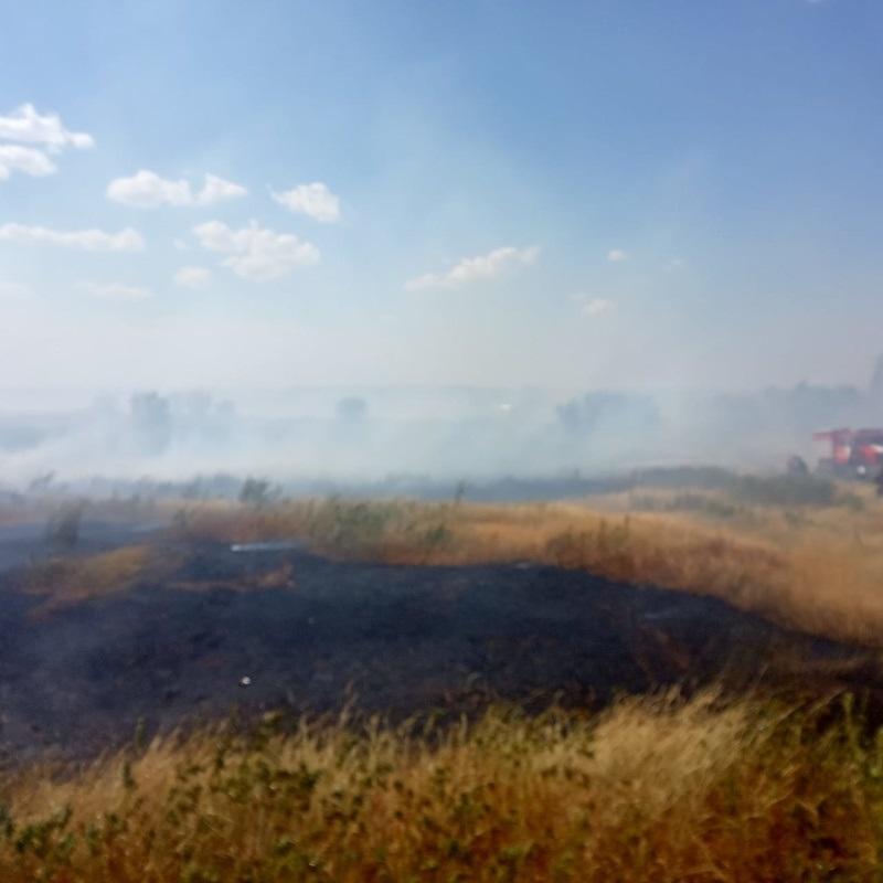 В Сорочинске из-за аномально жаркой погоды бушует крупный степной пожар